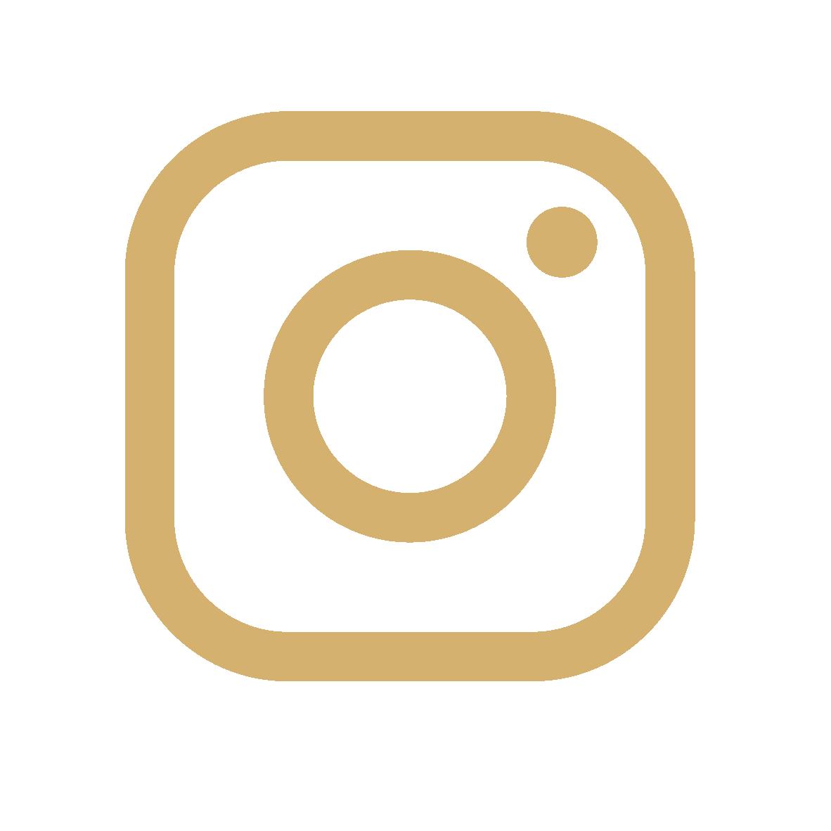 Logo instagram-02